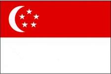 SG flag.jpg